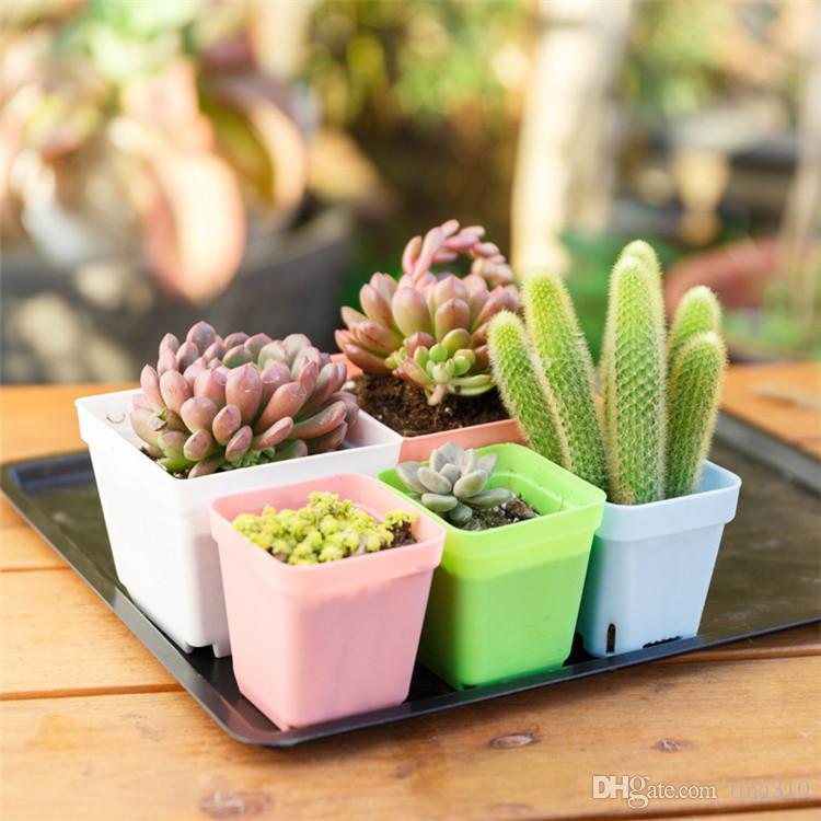 7 ألوان مصنع زهور الأزياء مصغرة البلاستيك زهور ملون ساحة زهور ديكور المنزل الديكور اللوازم IA653