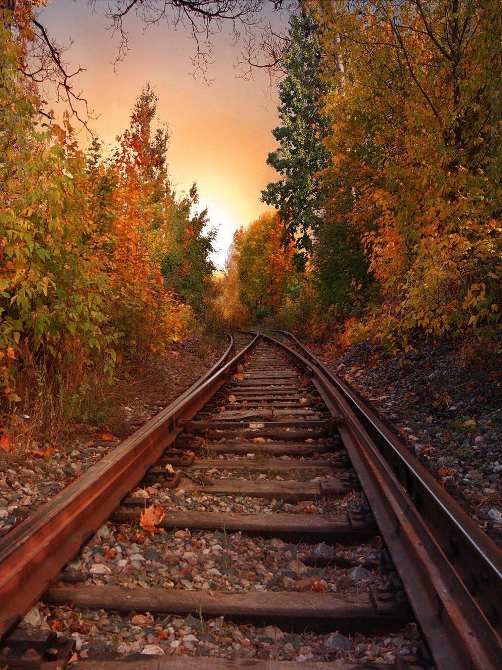 compre paisagem de fundo de ferrovia paisagem de outono paisagem de