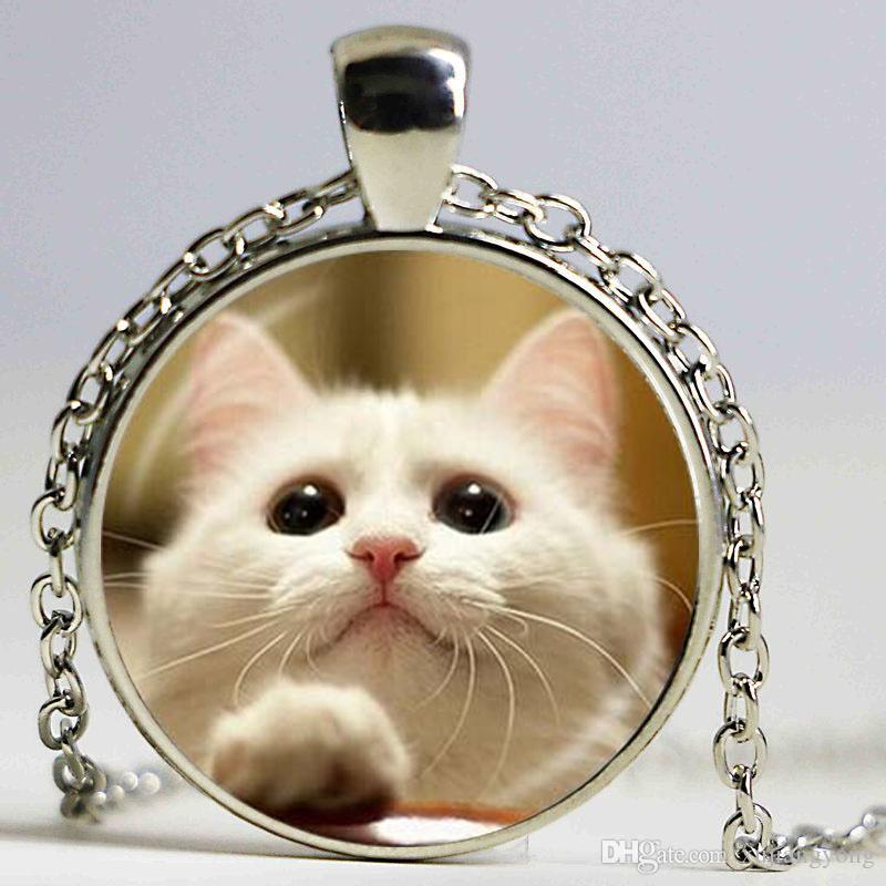 Mix Belle Chat Collier Pet Bijoux argent Plaqué verre pendentifs Trendy Animal Pendentif Collier Art photo colliers bijouterie