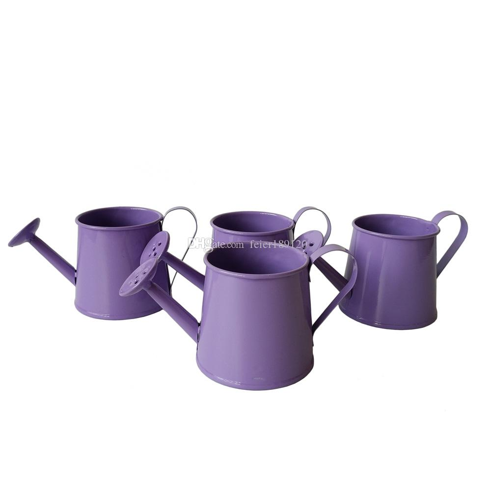 garden bucket. Garden Supplies Purple Color Small Watering Cans Metal Flower Pot Bucket Planter Mini Meat Plant Kettle Online