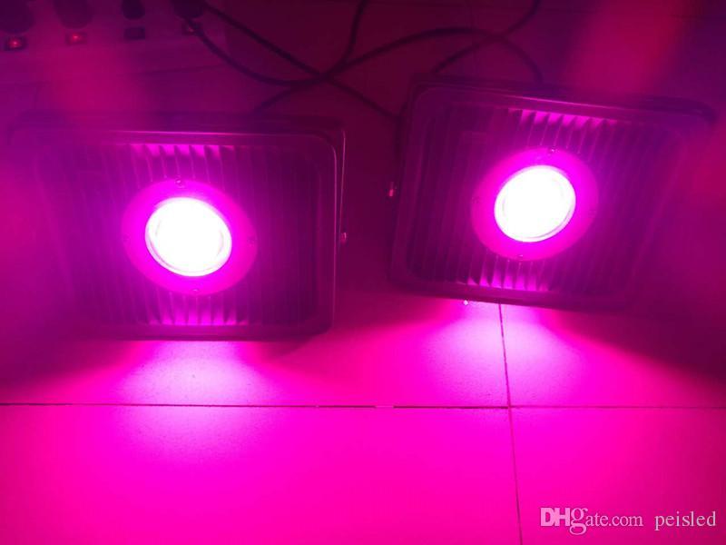Full spectrum LED grow Floodlight IP65 Outdoor Waterproof 50W 100W Plant Grow Flood Light Lamp 220V Indoor Growing & Flowering