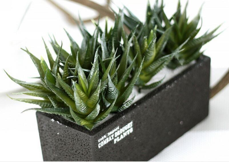 Compre Micro Paisagem Listrado Aloe Vera Planta De Plantas De ...