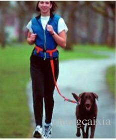 50 قطعة / الكثير العلامة التجارية الجديدة نايلون الأيدي الحرة المشي الكلب المقاود الجري الرصاص مصنع الكلب المنتجات