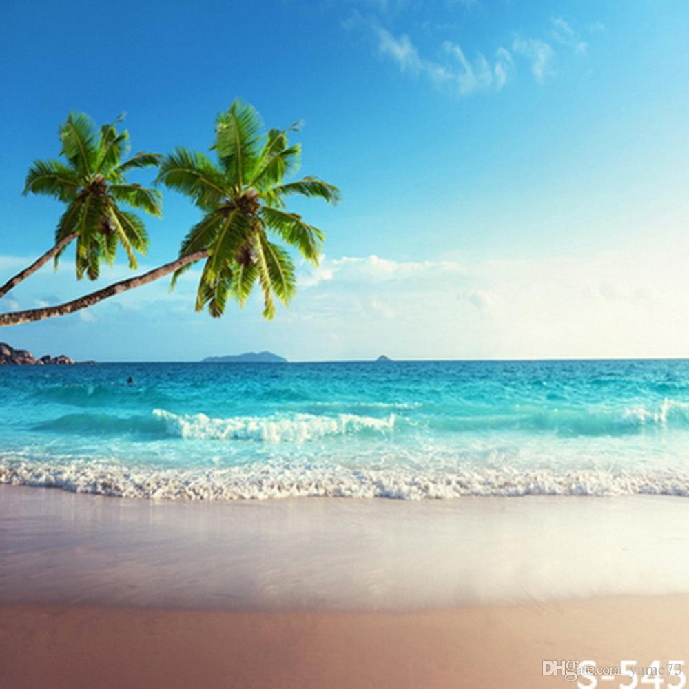 Palm Tree Beach: 2019 5x7ft Vinyl Beach Palm Tree Ocean Photography Studio