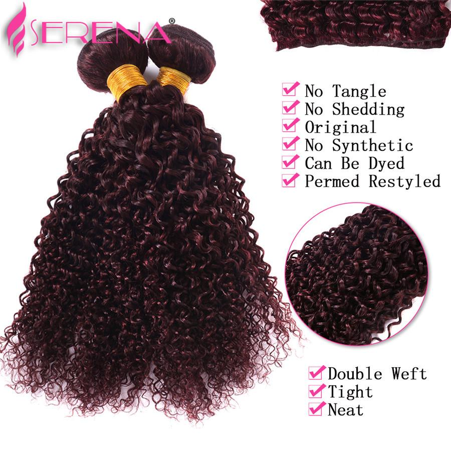 Human Hair Bundles With Lace Closure 4 Bundles 99j Kinky Curly Hair With Closure Brazillian Bundles With Closure Virgin Human Hair Weave