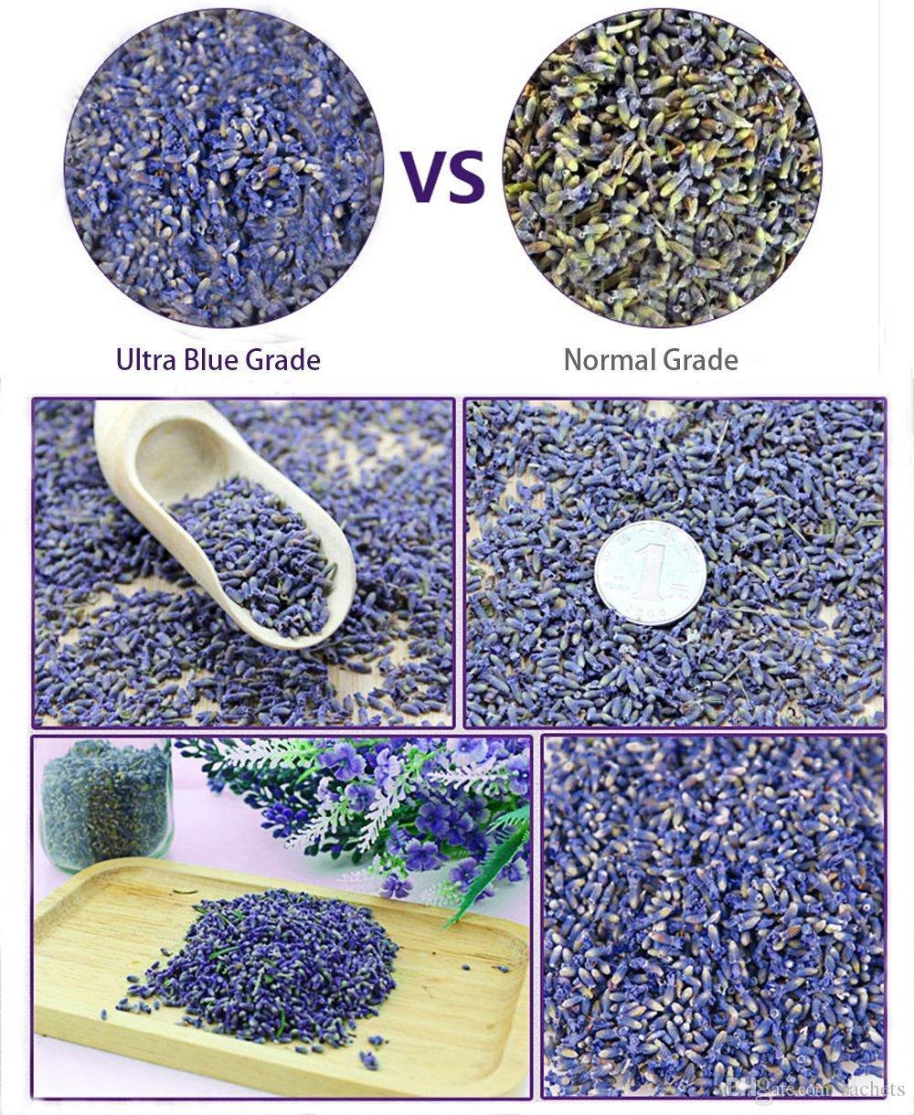 Sachets désodorisants de fleurs déshydratées de bourgeons de lavande normaux normaux, catégorie ultra bleue