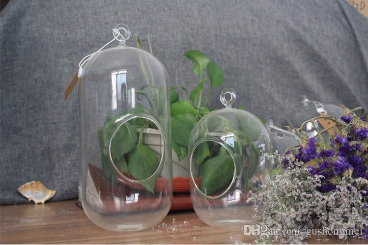 Fertilizzante piante acquario a piante vive per acquari regali