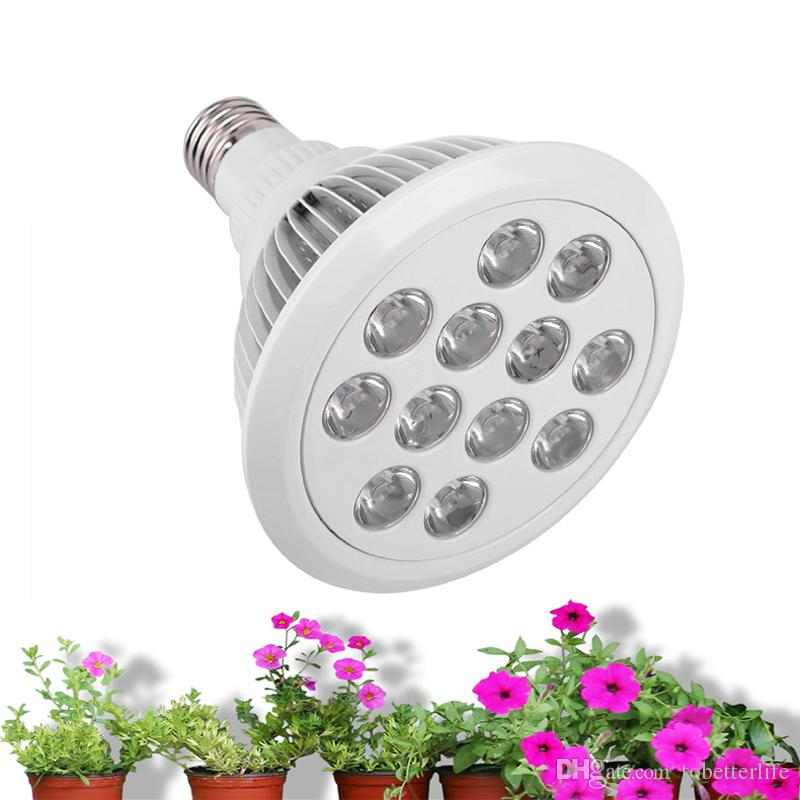 Full spectrum led grow lights E27 12W 24W 36W LED Plant Grow high power par 38 Plant grow lights price red blue red