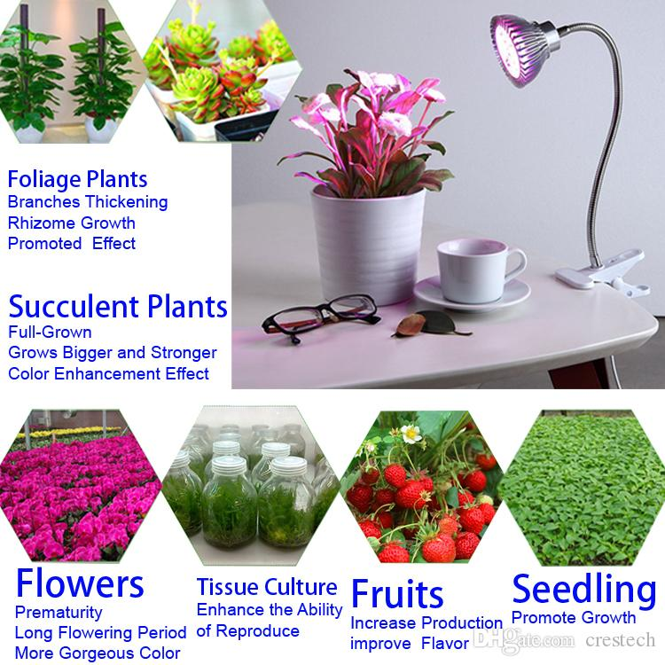 Full Spectrum LED grow light bulbs 18W 30W 50W 80W LED Grow Lights indoor Hydroponic Systems Plants lamp for flowering and growing