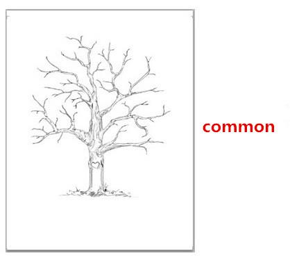 Wholesale- Fingerprint Tree Wedding Guest Book Fingerprint Canvas ...
