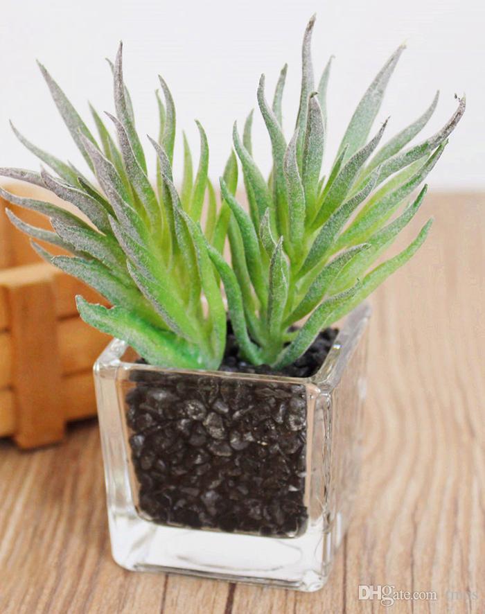 MOQ Livraison Gratuite Verre et Plastique PVC Emulational Plantes Succulentes Jardins Utilisés À La Maison Bureau ou Table et Table De Mariage ou Hallowmas