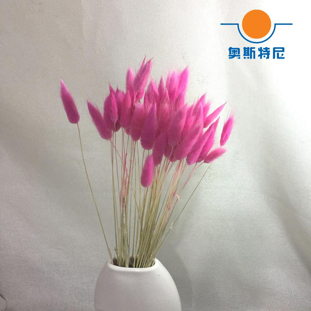 2018 Dried Natural Flower Bouquets Pink Color Lagurus Ovatus