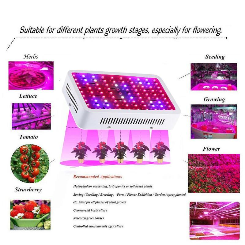 LED Grow Light 1000W Morsen Full Spectrum Growing Lamp Double-Chips 10W LED Indoor Plant Lamp For Greenhouse Hydroponic Vegetables Growth
