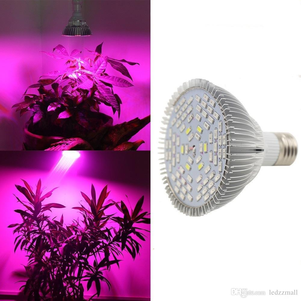 220v110v 30w 50w 80w e27 led grow light lamp for plants see larger image parisarafo Gallery