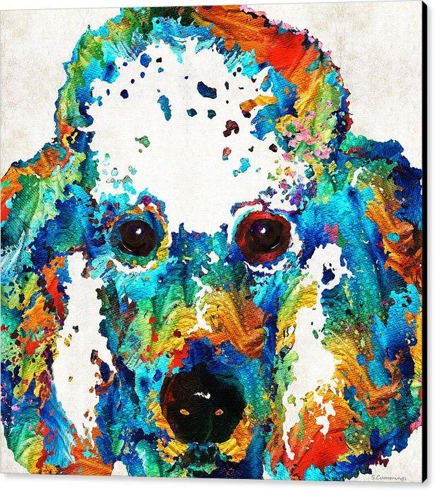 Colorido-poodle-dog-by-sharon-cummings impressão pintura artes e arte da decoração da parede da lona pintura a óleo sem embrulhado em um tubo