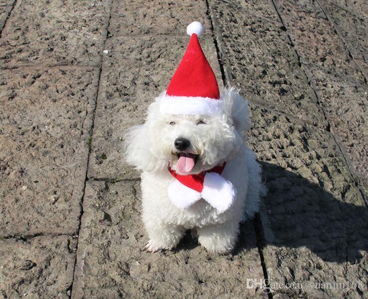 Рождество красная собака собака шляпа шарф костюм собака шляпа зоотовары горячая pet Рождество платье G851