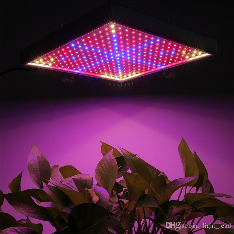 290 LEVOU Crescer Luz AC85-265V 30 W Espectro Completo Indoor Hidroponia Planta Crescer Luz Superior Rendimento Maior Qualidade Flores