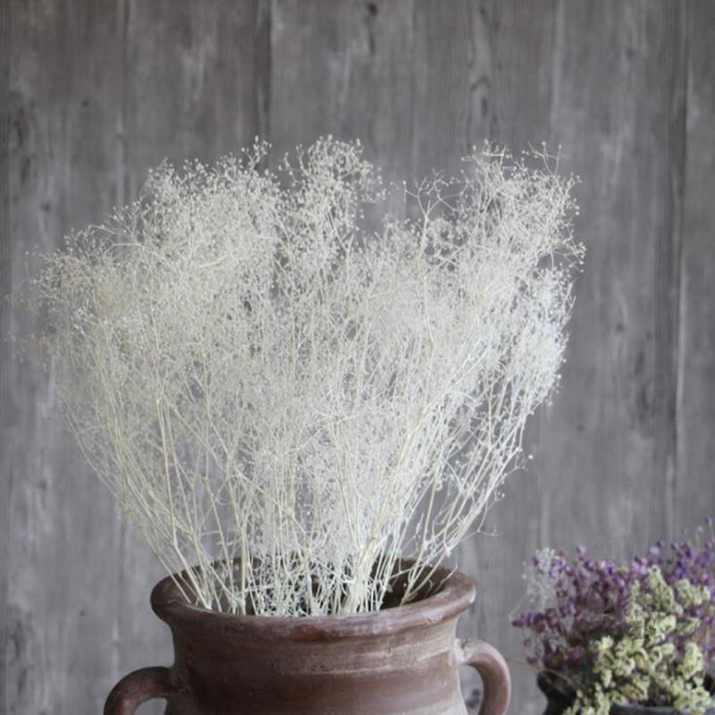Compre Dream Grass Arte Natural Flores Secas Al Por Mayor