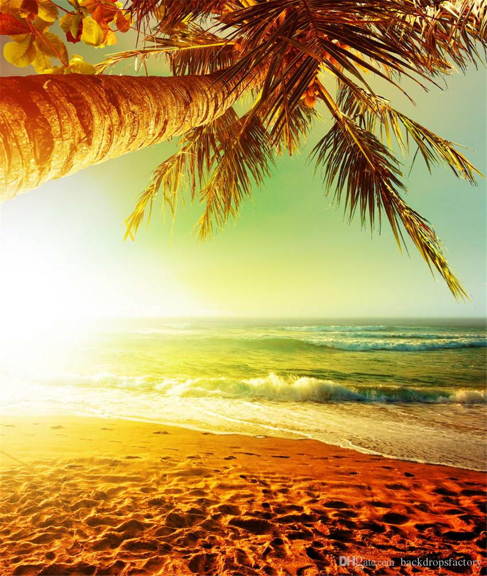 Palm Tree Beach: 2019 Beach Sunset Scenic Photography Background Printed