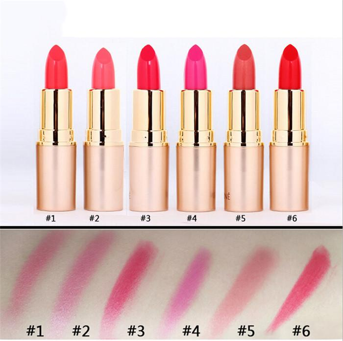 New Brand Lipstick Waterproof Lasting Makeup 1Pcs Beauty Make Up Lips Batons Lipstick Lipsticks 1288