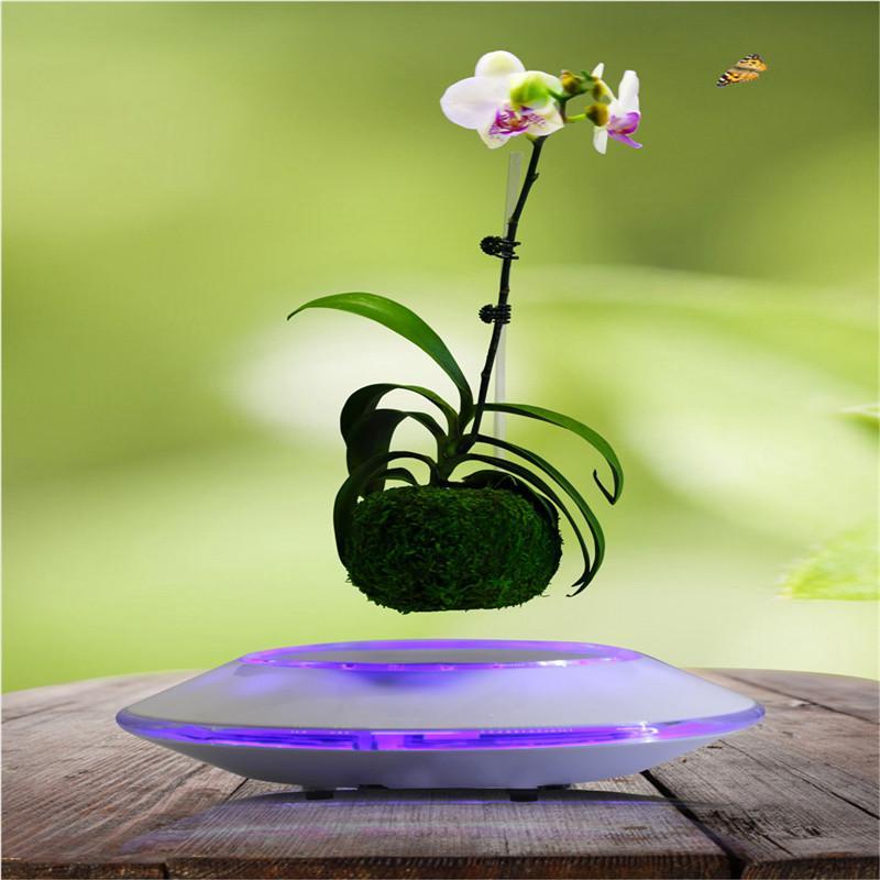 Discount Decorative Indoor Pots Magnetic Levitating Plant Pots With UFO  Base Decorative Air Bonsai Indoor Hot