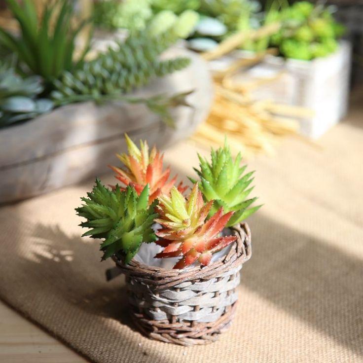 2018 aloe vera succulent plants flowers simulationfall artificial