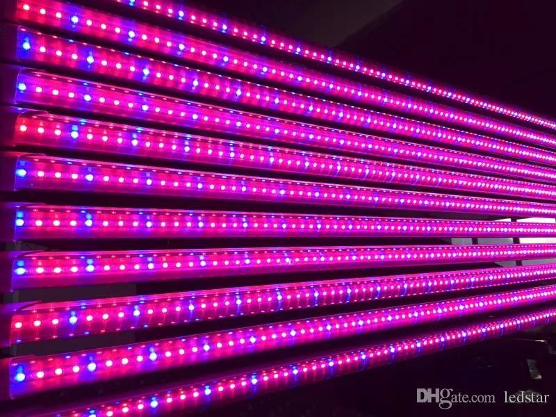 T8 LED Grow Tube 4ft 1.2M 12.7W 18W Pflanzen mit gutem Ertrag wachsen angemessener Anteil von Rot und Blau für das Wachstum von Zimmerpflanzen Hydroponics System