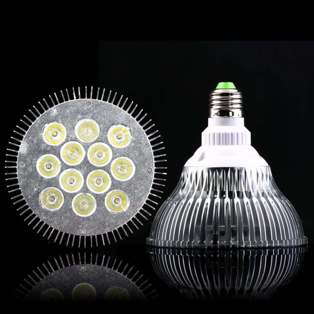Wholesale 12x2w e27 par38 dimmable led flood ceiling down spot light wholesale 12x2w e27 par38 dimmable led flood ceiling down spot light bulb lamp newest hot search infrared floodlight floodlight courses from jigsaw arubaitofo Image collections