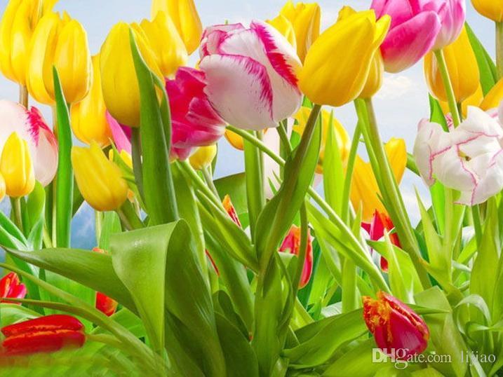 HOT Rainbow Tulip Seeds Rare Flowers Seeds Perennial Bonsai Plant Gift For Home Garden Courtyard Beautify