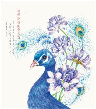 Chinese flower and bird colored pencil drawing art painting book stationery online store leader paper products from huiliu 18 09 dhgate com