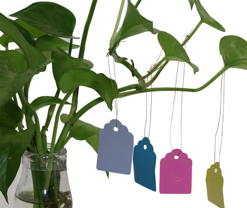 60 adet Bitkiler Asmak Etiketi Etiketleri Ve Markalar Fide Bahçe Saksı Plastik Etiket Numarası Plaka Asılı Kullanımlık Pvc Aracı