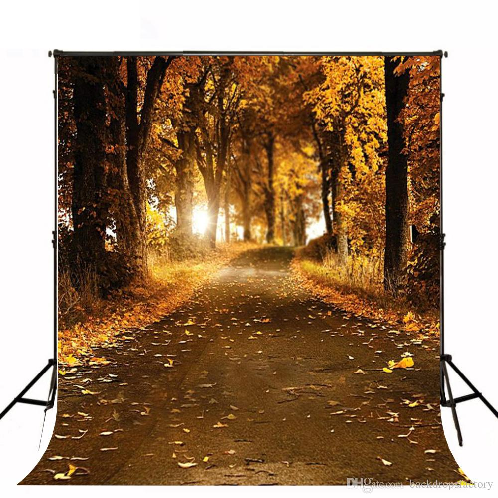 2018 5x7ft Falling Ginkgo Leaves Autumn Background Country