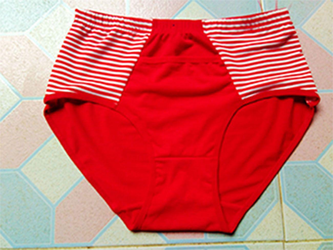 2017 Women'S Underwear High Waist Abdomen Hips Sexy Briefs Rose ...