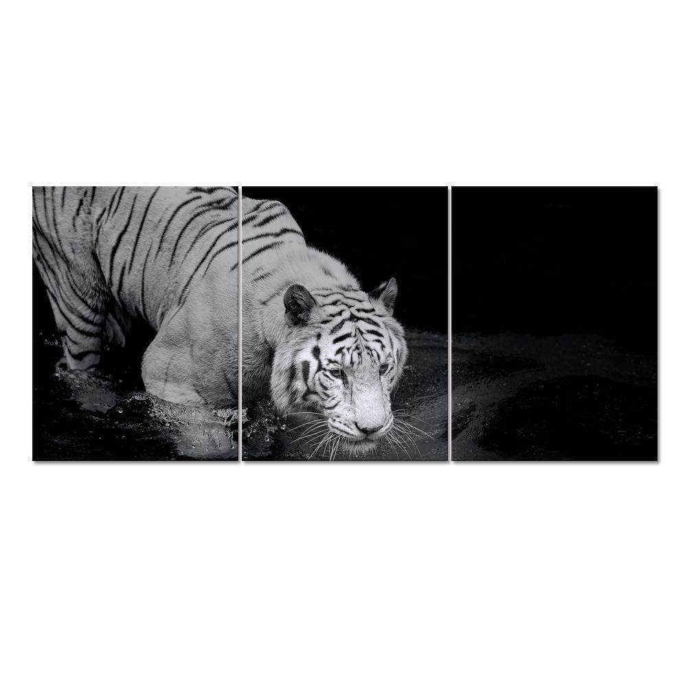 Animal Canvas Printed Art White Tiger HD Canvas Printing Canvas Home Decor  Wild Life Prints 3 Panels
