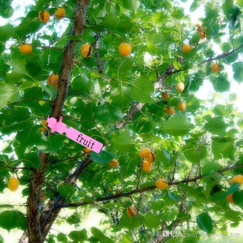 Jardinage jardin hang étiquette d'identification suspendus arbres fruitiers plante des semis arbre signes outil de classification de carte rapide