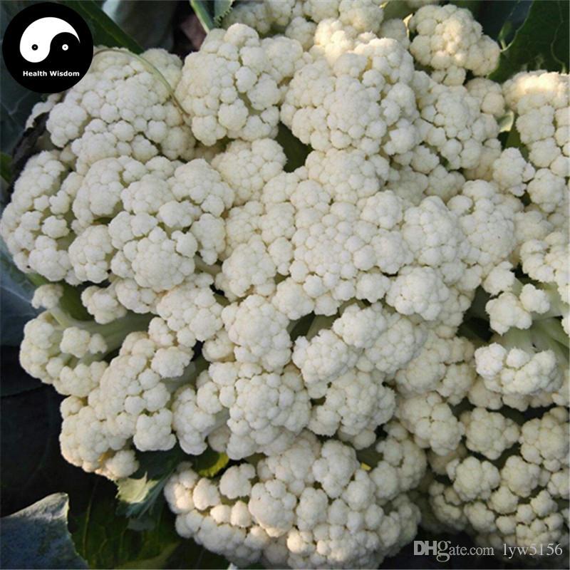 Online cheap buy chinese white cauliflower vegetable seeds plant online cheap buy chinese white cauliflower vegetable seeds plant broccoli grow brassica oleracea by lyw5156 dhgate mightylinksfo