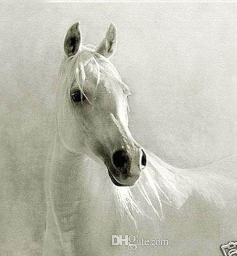 Framed A Beautiful White Horse,Pure Handpainted Modern Abstract ...