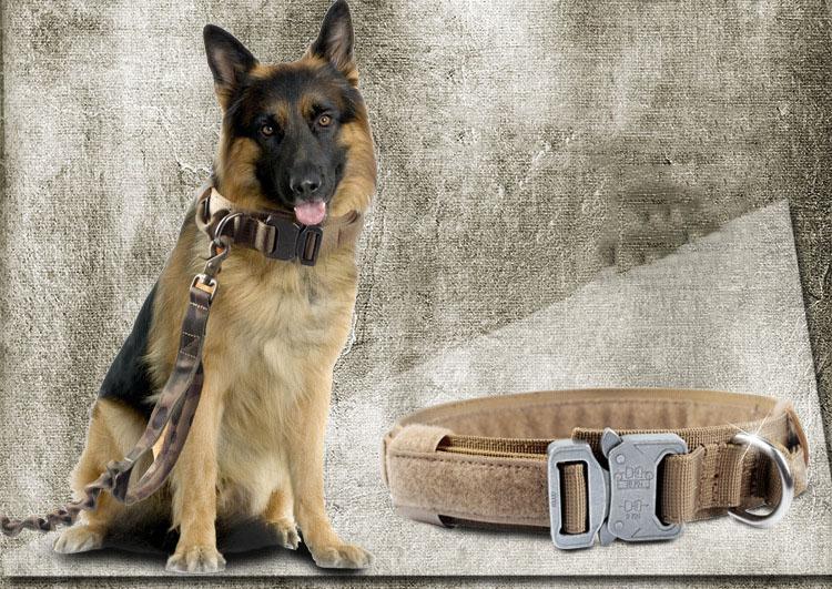 مستلزمات الحيوانات الأليفة الكلب الملحقات الكبيرة الكلب الياقات في الهواء الطلق المعدات العسكرية الكلاب الياقات 5.0 سم عرض 1050D طبقة مزدوجة حزام النايلون