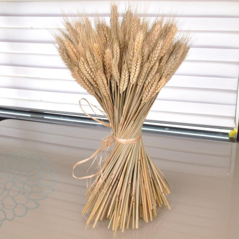 2018 Home Decor Dried Wheat Ear Bouquet Natural Flowers Rhdhgate: Dried Grasses Home Decor At Home Improvement Advice