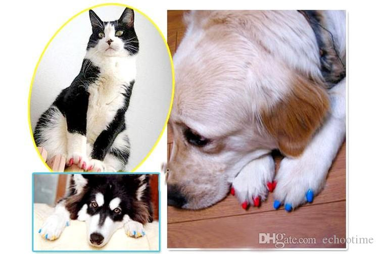 Soft Dog Cat Paw Claw Colorful Pet Puppy Kitten Nail Caps Adhesive Glue Control Nail Protector Caps Cover Set