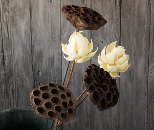 2018 vintage dried lotus flowers natural and dry flowers wholesale 2018 vintage dried lotus flowers natural and dry flowers wholesale art real flowers and decorative art flowers from zhmn1072 136 dhgate mightylinksfo