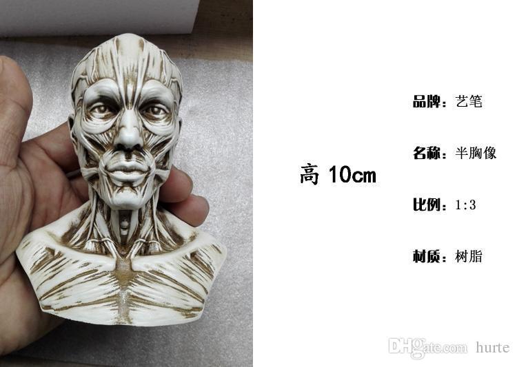 Großhandel Großhandel 1: 3 Menschlichen Skelett Anatomischen Modell ...