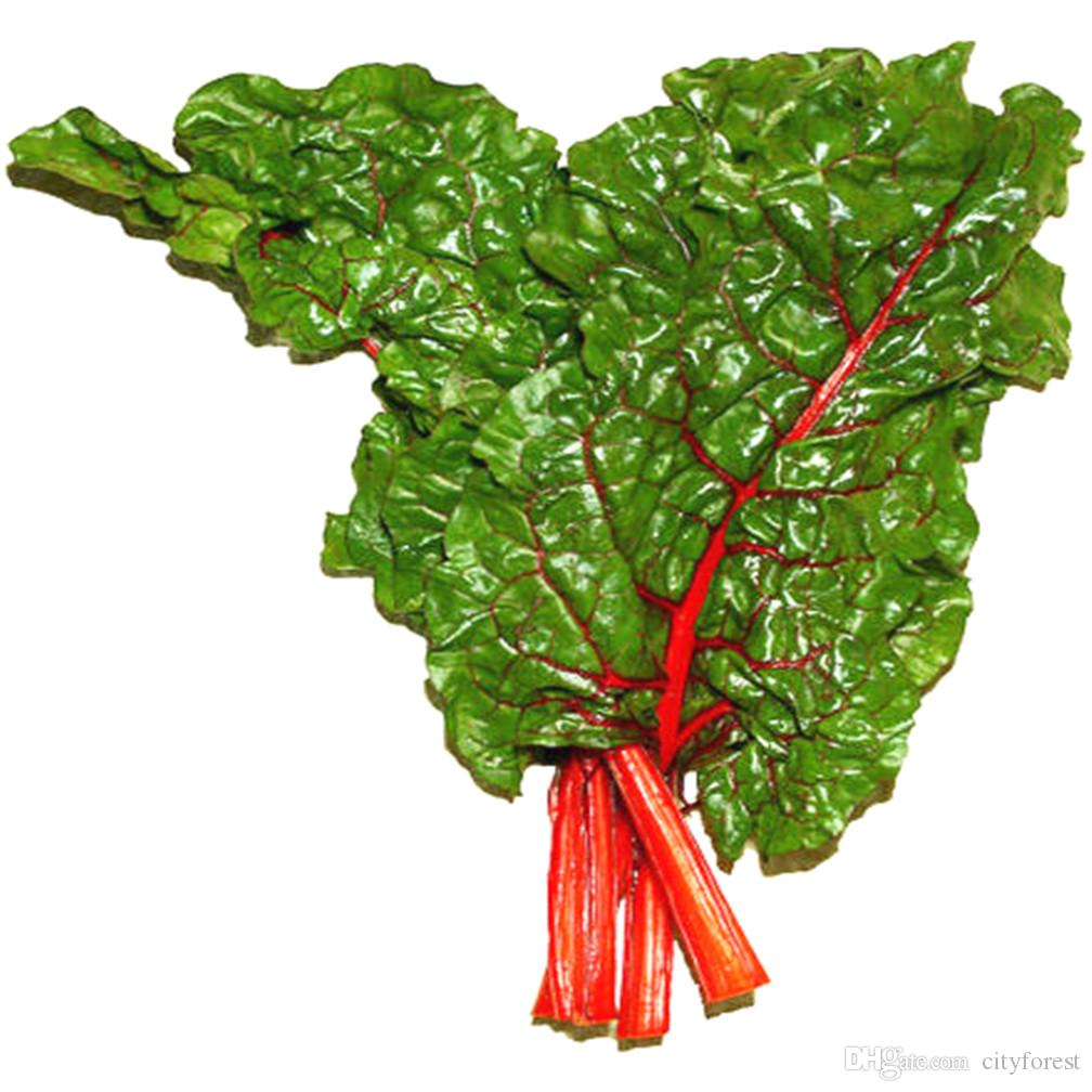 Leaf Beetroot Vegetable 100 Fresh Seeds Heirloom Highly Ornamental Salad Vegetable Perfect for the Flower and Vegetable Garden