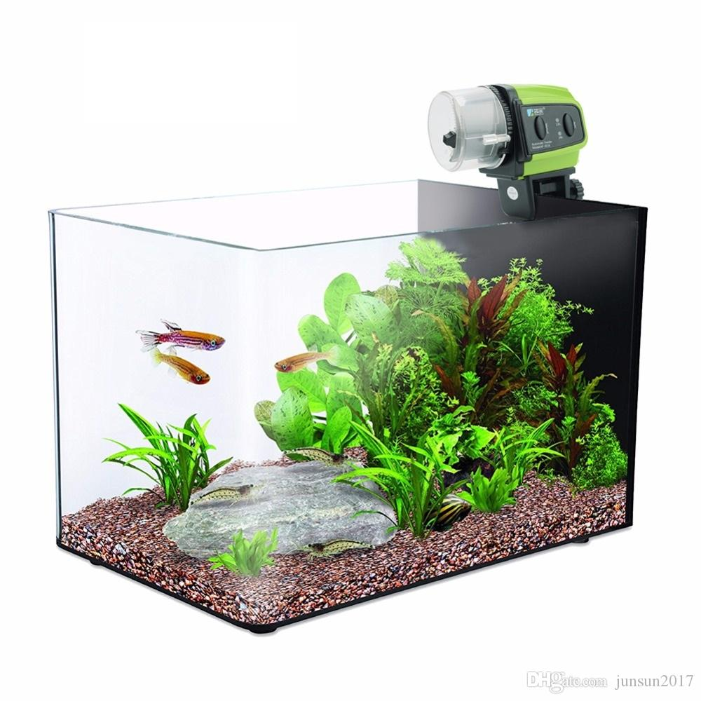 automatic x own to photo how make feeder homemade of your auto fish