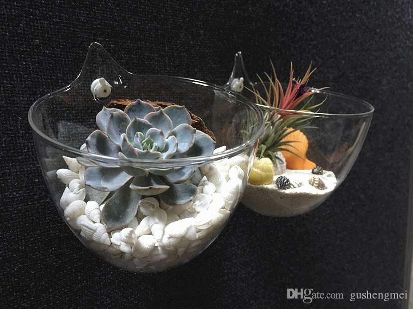 Large Opening Glass Bowl Vasewater Planting Wall Hanging Vase