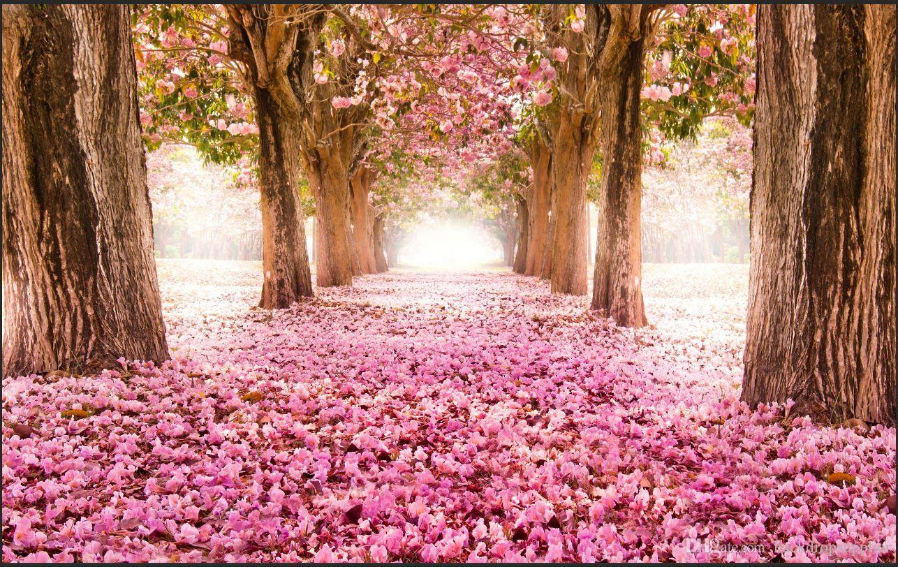 2018 7x5ft Pink Flowers Tunnel Path Leaves Flower Garden Park ... for Flower Park Background  300lyp