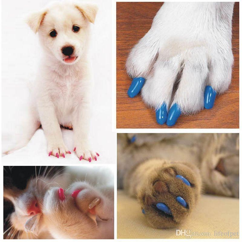 Colorful Soft Pet Cats Kitten Paw Claws Control Nail Caps Cover Size XS-XXL With Adhesive Glue