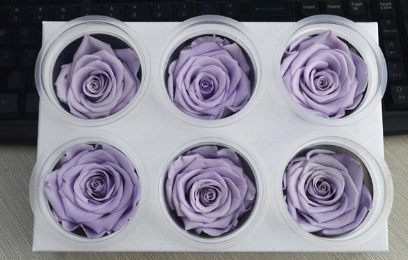 DHL Immortal Flower Roses Gift Box / Dried Flower Flower Ornaments / Creative DIY Birthday Gift A