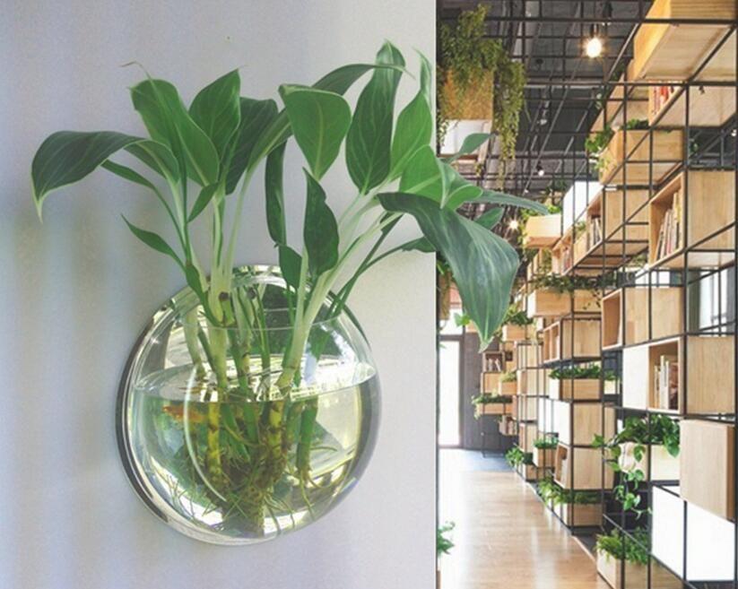 wall aquarium fish bowl hanging flowerpot goldfish aquatic plant