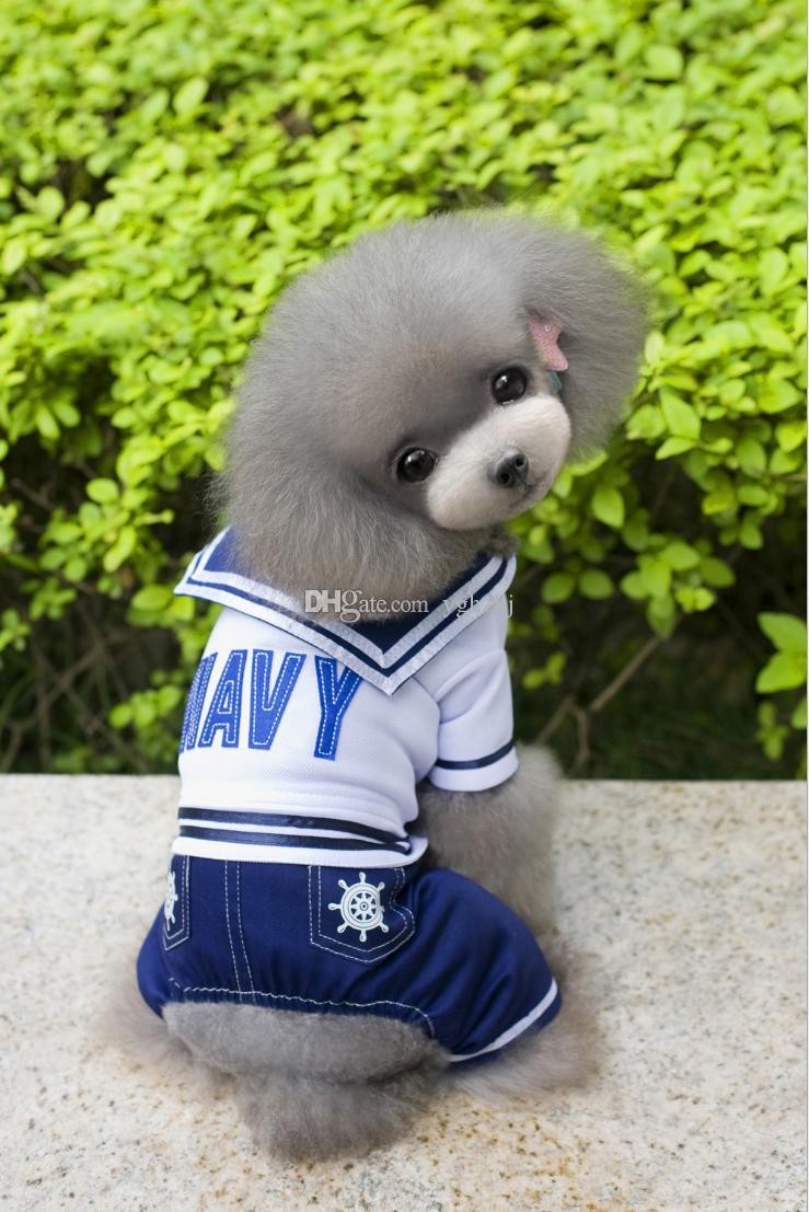 Toptan köpek giyim, ilkbahar ve yaz yeni m köpek kıyafetleri, Teddy köpek etek, kaptan dört ayak pantolon
